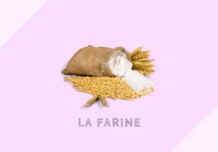 フランスの小麦粉の種類と用途