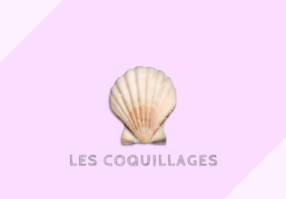 フランスの貝の種類と牡蠣の大きさ基準[coquillages]
