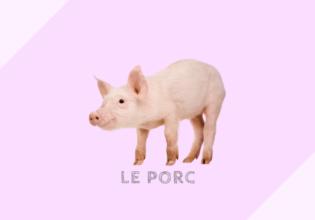 フランスの豚肉とシャルキュトリーの種類と料理例[porc]
