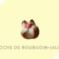 ブリオッシュ・ブルゴワン=ジャイユー Brioche de Bourgoin-Jallieu