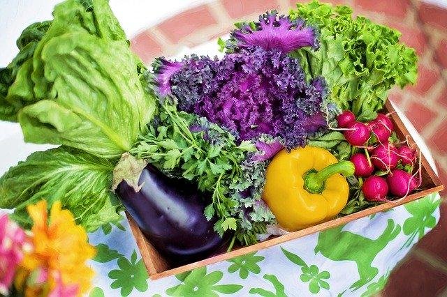 フランスの旬の野菜