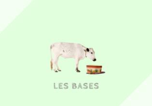 フランス菓子の材料[一覧]